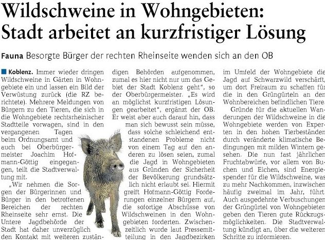 rz 25.6.2016, S. 25 Wildschweine218cd636f2a6c62
